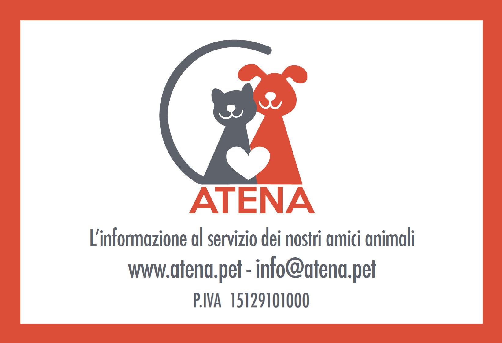 tesserino-Atena-pet-fronte-solo-partita-IVA